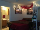 Can sublease from Mid-May to July 2017 - Can do $425