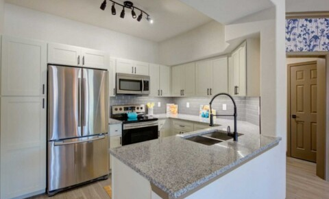 Apartments Near South Texas Newly Remodeled! for South Texas College of Law Students in Houston, TX