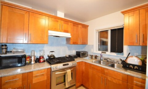 Apartments Near Rego Park 6608 102 ST for Rego Park Students in Rego Park, NY