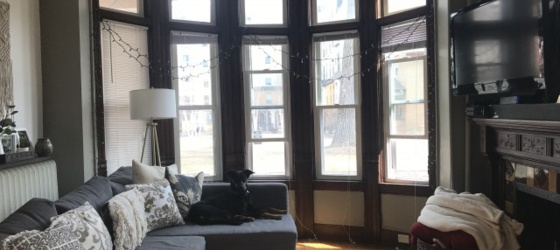 1 bedroom apartment at the Historic Florence Court
