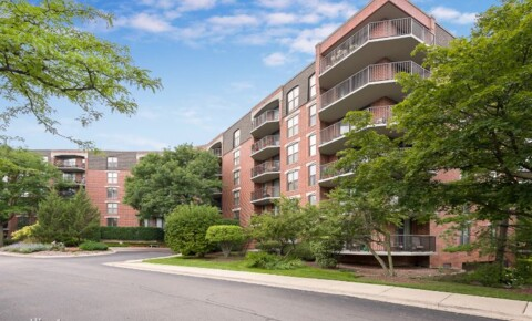 Apartments Near Lewis 509 Aurora Ave 117 for Lewis University Students in Romeoville, IL