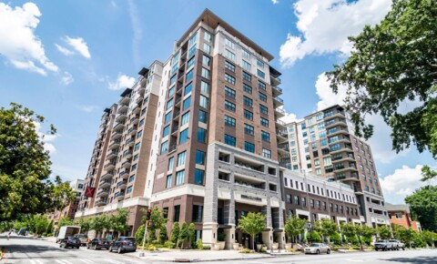 Apartments Near Atlanta The Ashley Gables Buckhead for Atlanta Students in Atlanta, GA