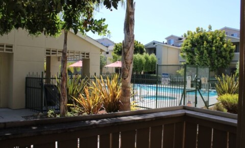Apartments Near Cabrillo 228 Everson Dr for Cabrillo College Students in Aptos, CA