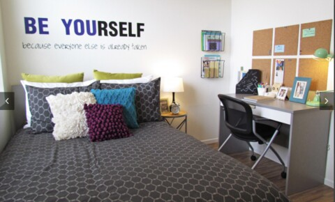 Apartments Near USC 4B2B Fully Furnished Apartment! for University of Southern California Students in Los Angeles, CA