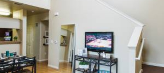 $465 /- Private 1 bd/1bath in a 4x4 Townhome *FULLY FURNISHED* AUGUST MOVE IN