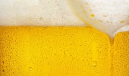 The Science of Beer